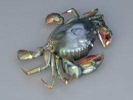 River Crab 3d model