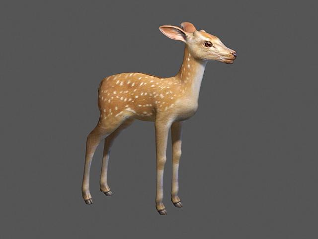 Sika Elk 3d model