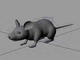 Rat Mouse Rig 3d model