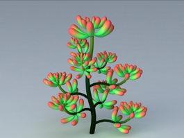 Sedum Pachyphyllum Plant 3d model