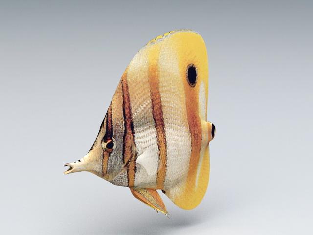 Colorful Tropical Fish 3d model