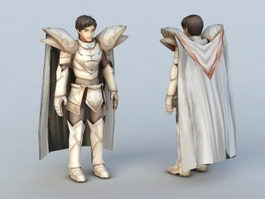 Anime Male Knight 3d model