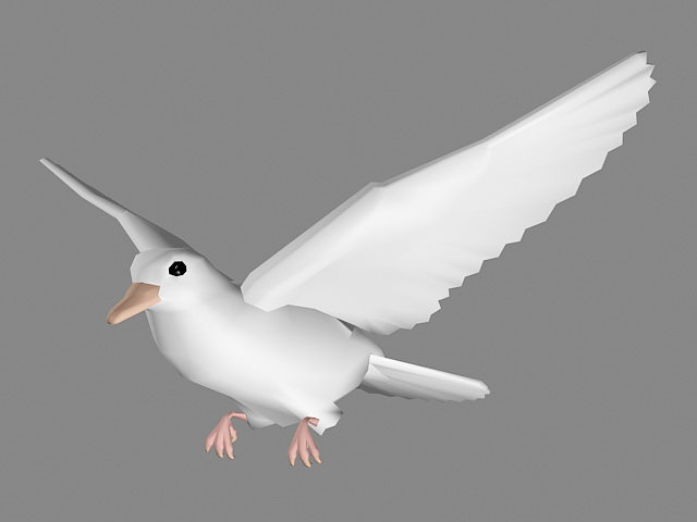 White Dove Flying 3d model