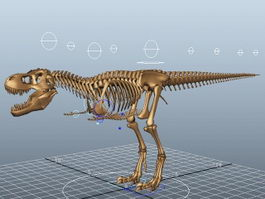 T-Rex Skeleton Rig 3d model