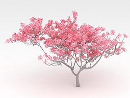 Red Flowering Tree 3d model