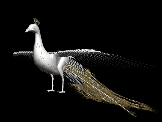 White Peacock 3d Model 3ds Max Files Free Download Modeling 43991