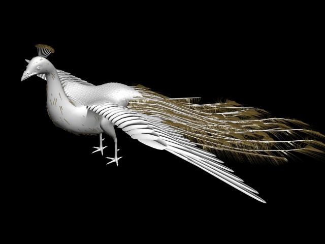 White Peacock 3d model