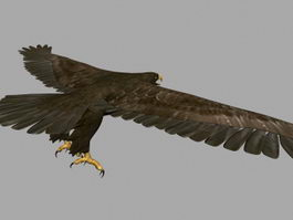 Animated Eagle Flying 3d model