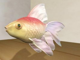 Veiltail Goldfish 3d model