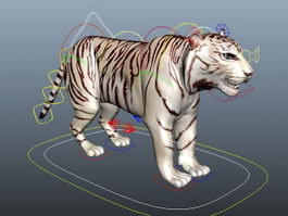 White Tiger Rigging 3d model