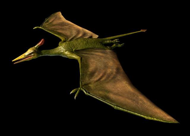 Pterosaur Animation 3d model Cinema 4D,Maya,Zbrush files free