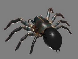 Monster Spider 3d model