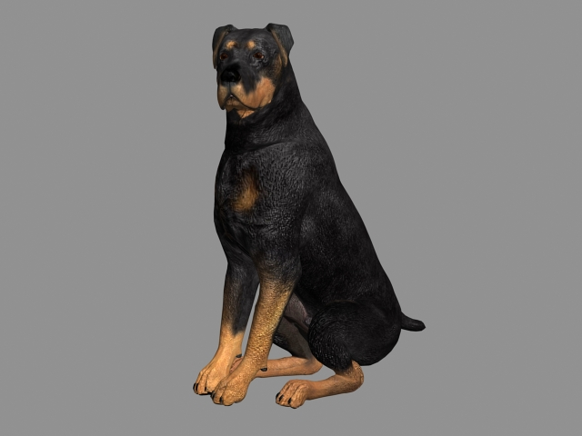 Millennium Dog 3d model