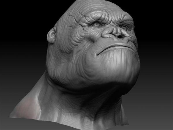 King Kong Head 3d model