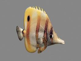 Animated Ocean Fish 3d model