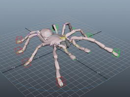 Cartoon Wolf Spider Rig 3d model