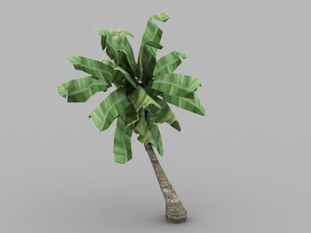 Banana Tree Plant 3d model