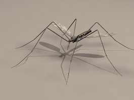 Male Mosquito 3d model