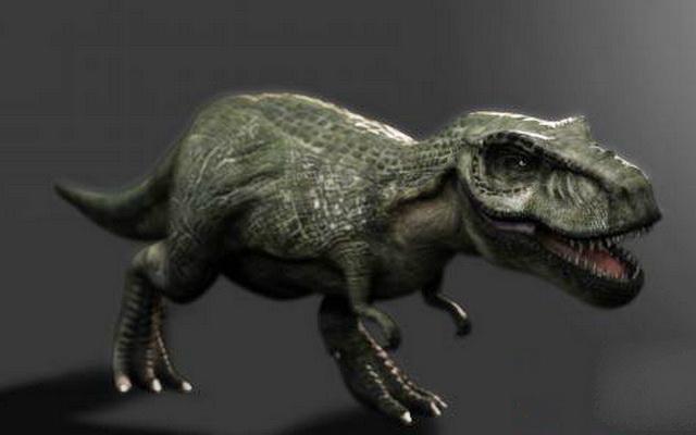 Gorgosaurus Dinosaur 3d model