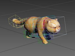 Garfield Cat Rig 3d model
