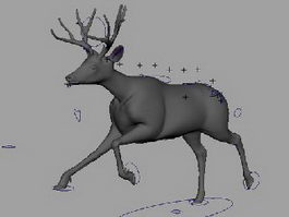 Animated Mule Deer 3d model