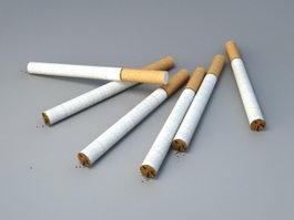Filtered Cigarettes 3d model