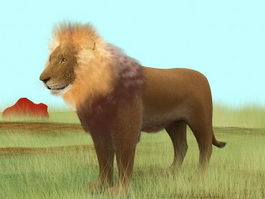 Prairie Lion 3d model