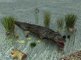 River Crocodile 3d model