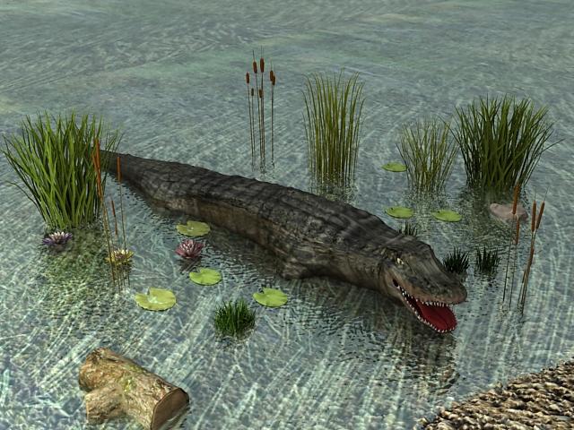 River Crocodile 3d model