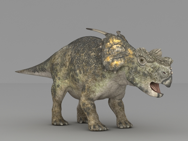 Achelousaurus Dinosaur 3d model