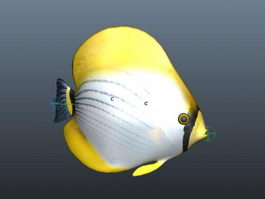 Marine Fish Animation 3d model