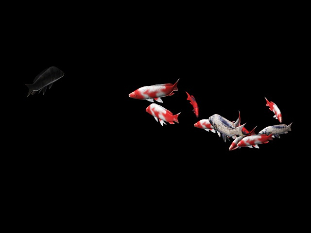 School of Fish Animation 3d model