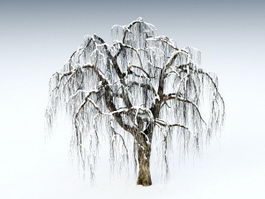 Winter Snow Tree 3d model