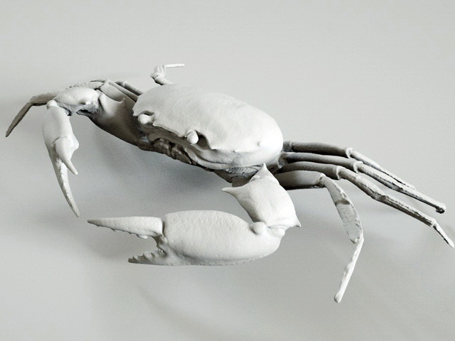 Crab Sculpture 3d model