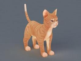 Orange Cat 3d model
