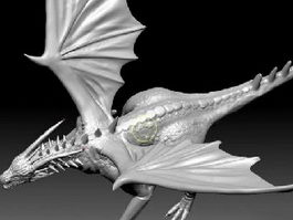 Cool Dragon 3d model