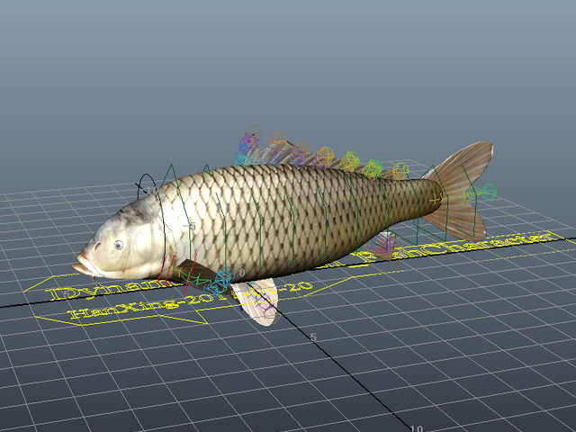Carp Fish Rig 3d rendering