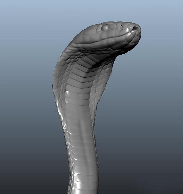 Cobra Snake 3d model rendered image