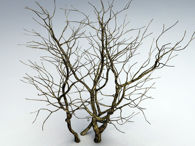 Withered Tree 3d model rendered image