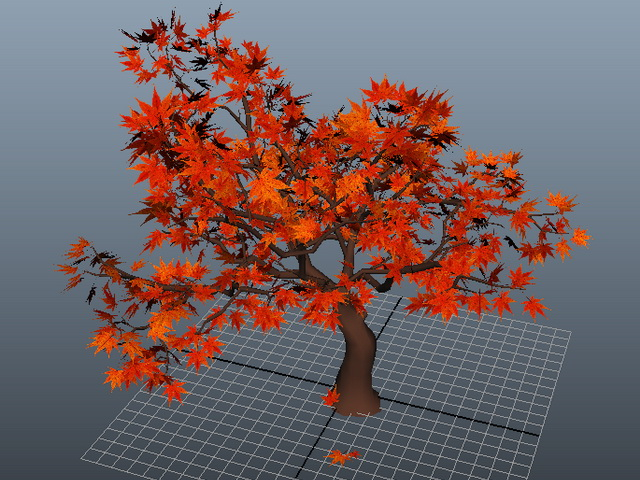 Red Maple Tree 3d model rendered image