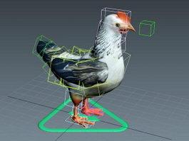 Chicken Rig 3d model
