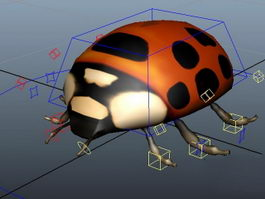 Lady Beetle Rig 3d model