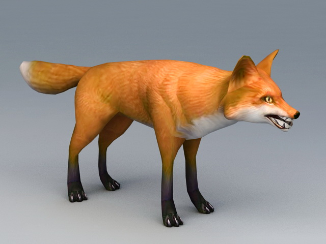 Red Fox 3d model rendered image