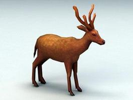 Pampas Deer 3d model