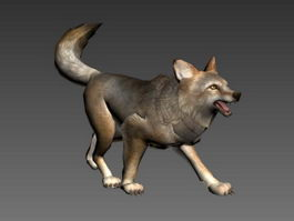 Coyote Attack Animation 3d model