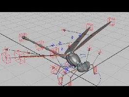 Dragonfly Rig 3d model