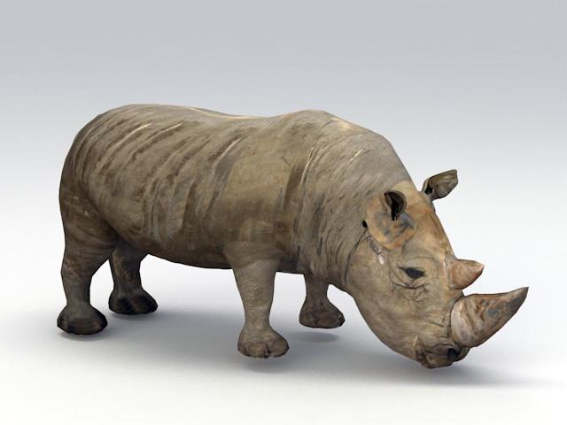 Black Rhino 3d model rendered image