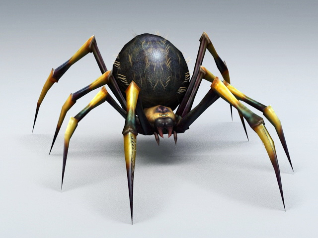 Black and Yellow Spider 3d model rendered image