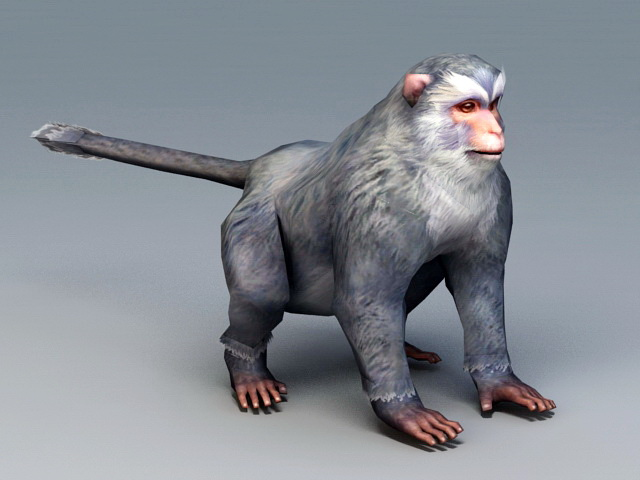 Gray Monkey 3d Model 3ds Max Files Free Download