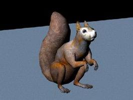 Fox Squirrel 3d model